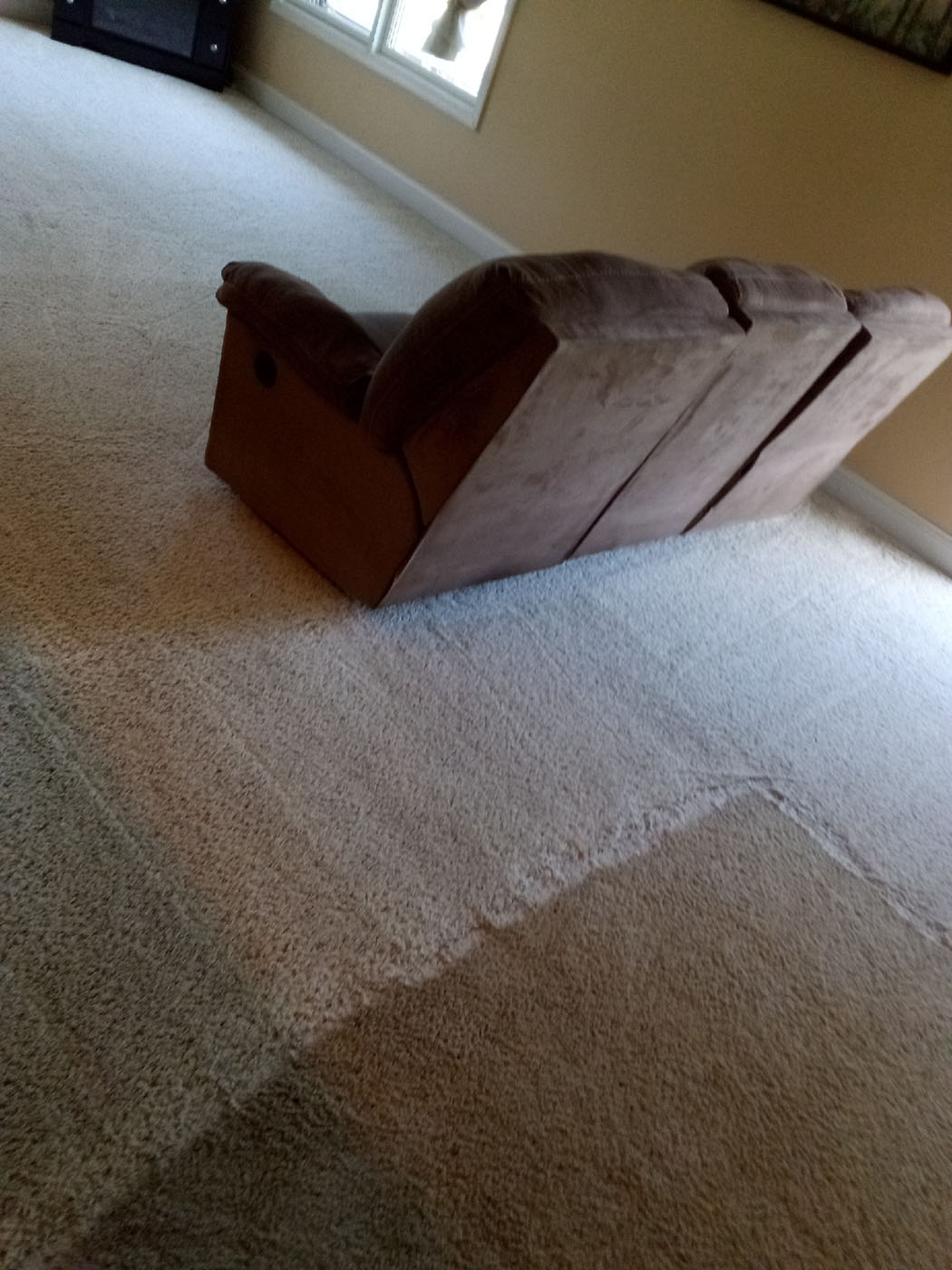 Carpet Care Plus Before After Carpet Cleaning 1