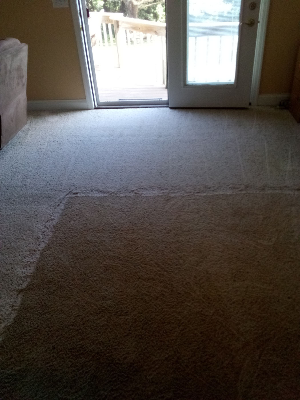 Carpet Care Plus Before After Carpet Cleaning 2