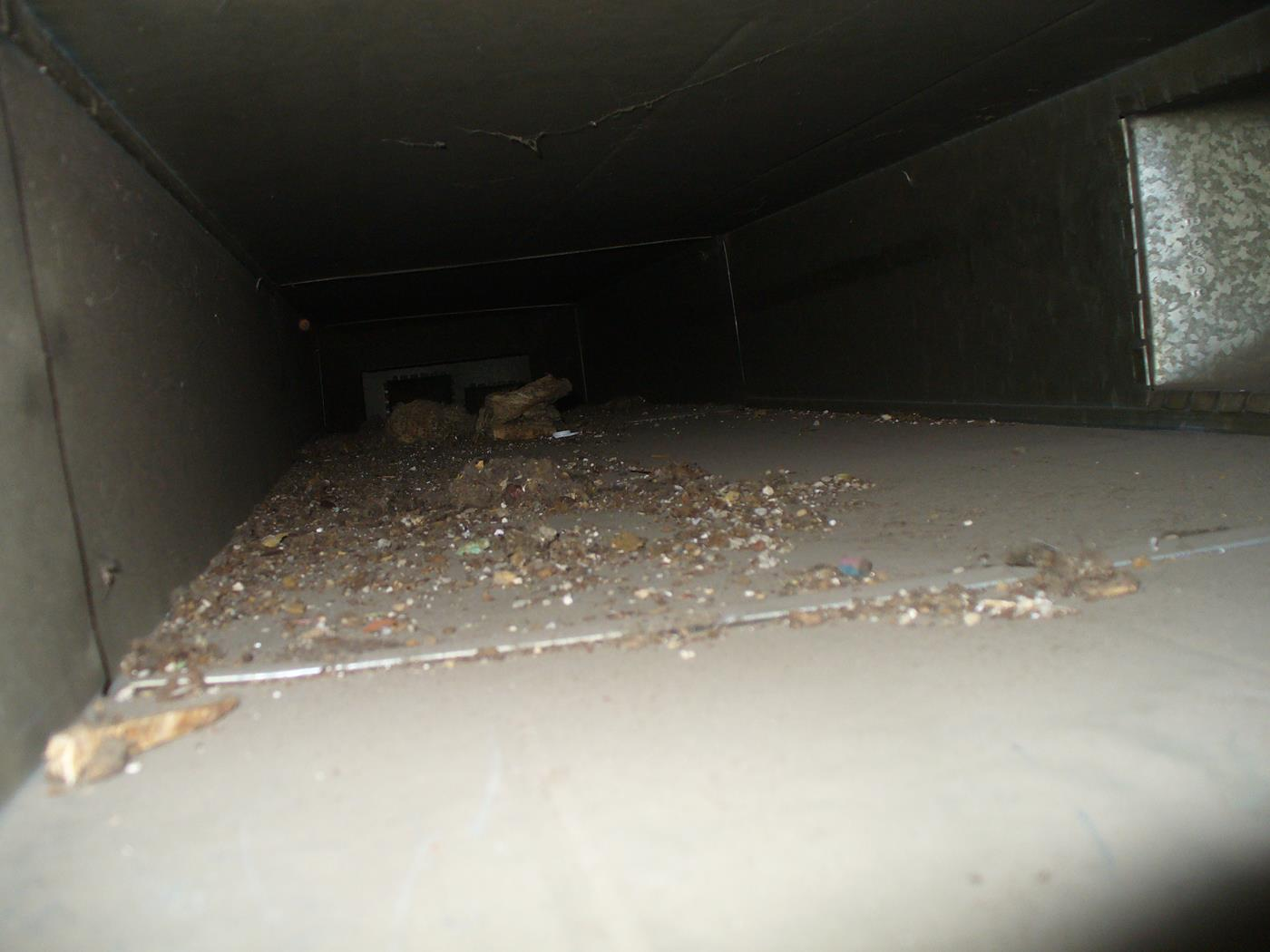 Carpet Care Plus Duct Cleaning 14.JPG